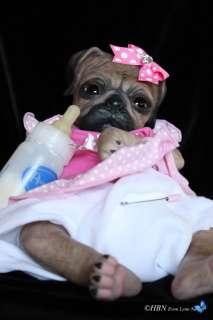 HBN* PROTOTYPE OOAK Reborn Baby PUG PUPPY DOG Denise Pratt   Princess