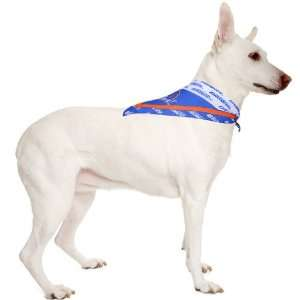 NCAA Boise State Broncos Large Pet Collar Bandana Sports