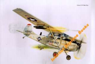 ART CESSNA O 1E BIRD DOG USAF VIETNAM WAR FAC 20th TASS DA NANG 1970