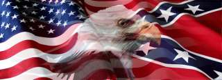 Vuscape Truck Rear Window Graphic   US Rebel flag eagle