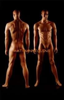 AMT Mannequin Standing Male Model Matt