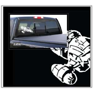 Serenity Firefly Vessel Large Vinyl Decal