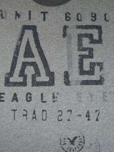 American Eagle AE Mens Gray Band Graphic T Shirt NWT