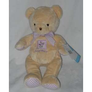 Bunches of Love Purple Gingham Sweet Baby Tan Teddy Bear Toys & Games