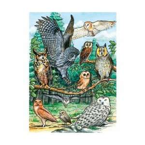 Outset Media Games North American Owls Tray Puzzle, 35 pcs