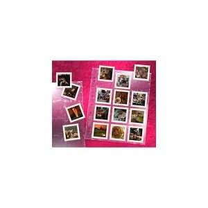 CLEAR FILE Format #23B Archival PLUS Slide Page Camera
