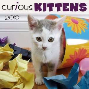 Curious Kittens   2010 Wall Calendar (9781554562480