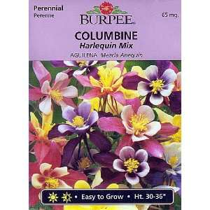 Burpee Harlequin Mix Columbine   50 Seeds Patio, Lawn & Garden