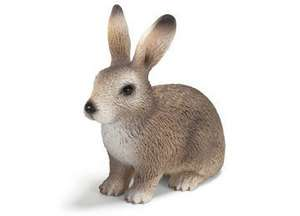 NEW Schleich Wild Life Animals Europe Wild Rabbit Bunny Hare 14631