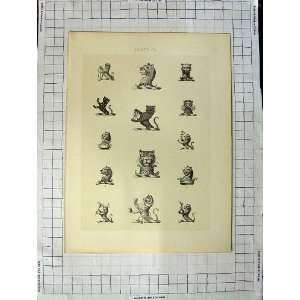Plate Of Heraldry Crests C1790 C1900 Wild Animals