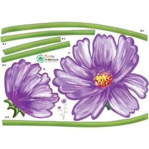 Purple Cosmos Vibrant Flower Sprouts and stem   Reusable