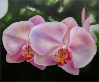 High Q. Hand Painted Oil Painting Two Lavender Orchids |