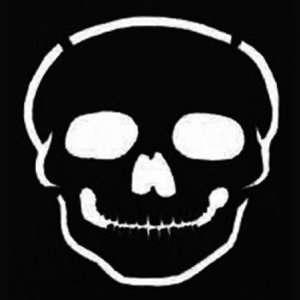 Snazaroo Face Paint Stencils   Skull Toys & Games