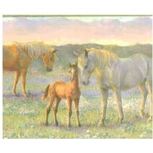 Horsing Around Green Wallpaper Border by Chesapeake in Crazy About