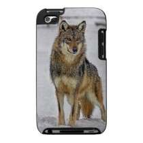 Wolf Standing Proud Cases For The Ipod Touch by debsimonphotos